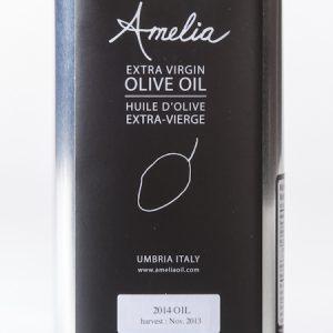 Amelia Oil (2 of 4)